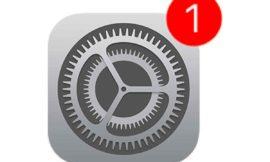 Apple ha rilasciato iOS 13.5.1 e iPadOS 13.5.1